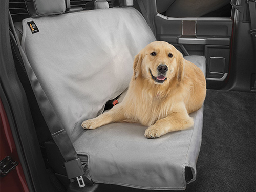 golden retrieve dog in backseat of truck with seat protector on